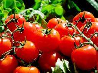 Revoluție în retail. Un supermarket din Marea Britanie investește 22 mil. dolari în  agricultura pe verticală . Legumele, culese cu 2 ore înainte de ambalare