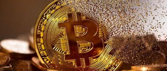 Analiză: 2021 va fi un an optimist pe burse. Monedele virtuale ar putea creşte mai bine decât aurul. Sectorul mașinilor electrice, supraevaluat