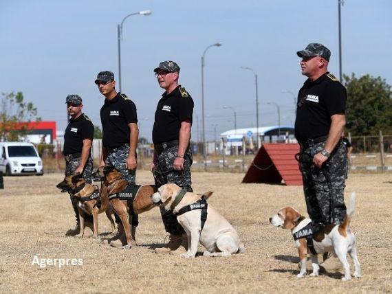 Câinii în care statul investește 150.000 de euro, dar care produc peste un milion de euro pentru România, anual