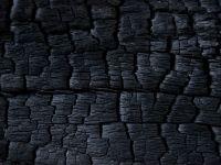 """""""Aurul negru"""" și-a pierdut valoarea de odinioară. Stocuri imense de cărbune, în derivă în porturile europene"""