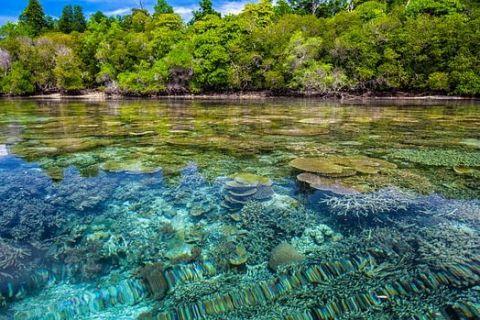 Prima țară din lume care declară  criză climatică naţională  și adoptă o lege în parlament pentru combaterea schimbărilor climatice