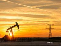 Cum va evolua prețul petrolului în 2020. Tot mai multe state non-OPEC produc țiței și inundă piața mondială