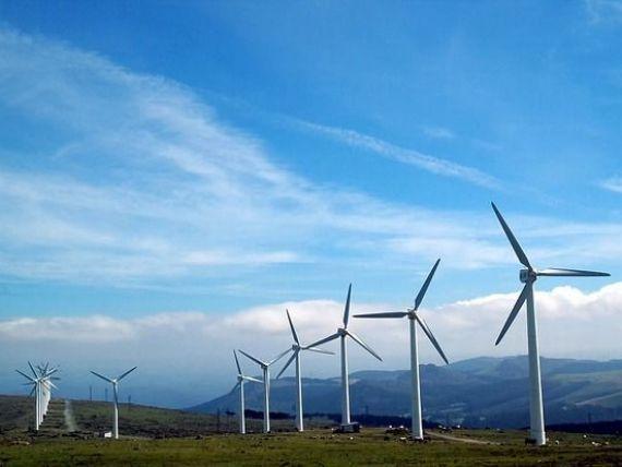 Vântul bate cu folos în Dobrogea. Un sfert din consumul de energie electrică din România provine, luni, din surse eoliene. 800 de MW merg la export