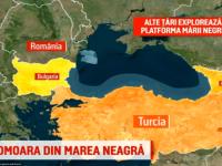 """Nicolescu (Deloitte): """"Statul ar putea câştiga peste 20 mld. dolari din extracţia gazelor din Marea Neagră. Avem o comoară în grădină şi noi stăm lângă gard şi tot discutăm"""""""