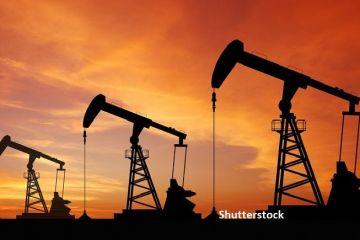 OPEC şi aliaţii vor discuta o reducere fără precedent a producţiei de petrol, pe fondul pandemiei. Prețul a scăzut la 20 de dolari, de la 65, la începutul anului