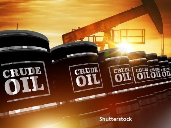 Prețul petrolului va rămâne jos cel puțin până la sfârșitul anului. OPEC înrăutăţeşte estimările privind cererea de ţiţei în 2020