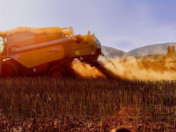 Reuters: Seceta ar putea reduce aproape la jumătate producţia de grâu din România, al doilea exportator al UE. Recolta, estimată la 5-7,4 mil. tone în acest an