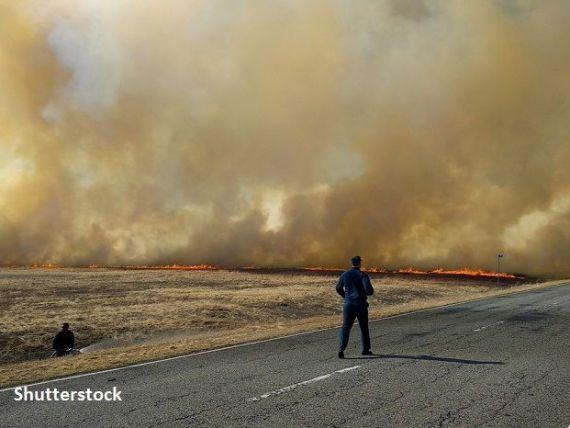 Arde Siberia! Rusia  însămânţează norii , pentru a stinge incendiile devastatoare din nordul țării