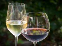 Vinul  Adamclisi , produs în Dodrogea, a fost inclus în Registrul UE al produselor cu  denumire de origine protejată