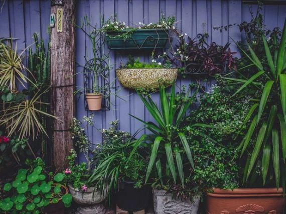 (P) 9 trucuri pentru decorarea grădinii