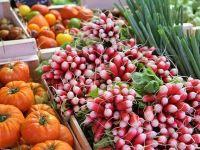 Lanț de retail: Recolta de legume de la producători români în sezonul de primăvară-vară s-a dublat în 2020