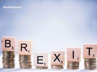 Londra îndeamnă companiile  să se pregătească de schimbări majore , cu o lună înainte de retragerea Marii Britanii de pe piaţa unică şi din Uniunea Vamală europeană