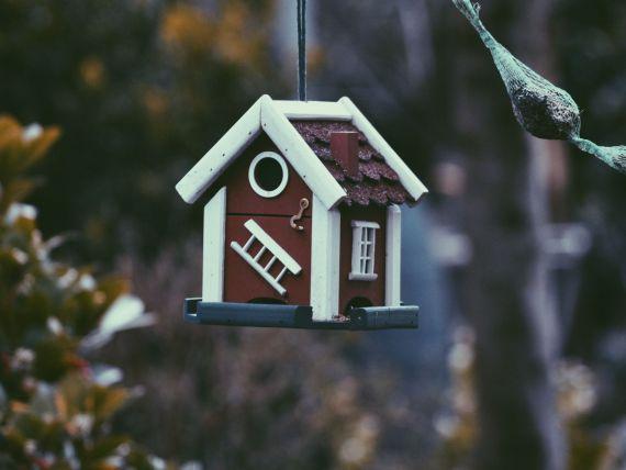 (P) Cum estimezi corect un buget realist pentru construcţia unei case