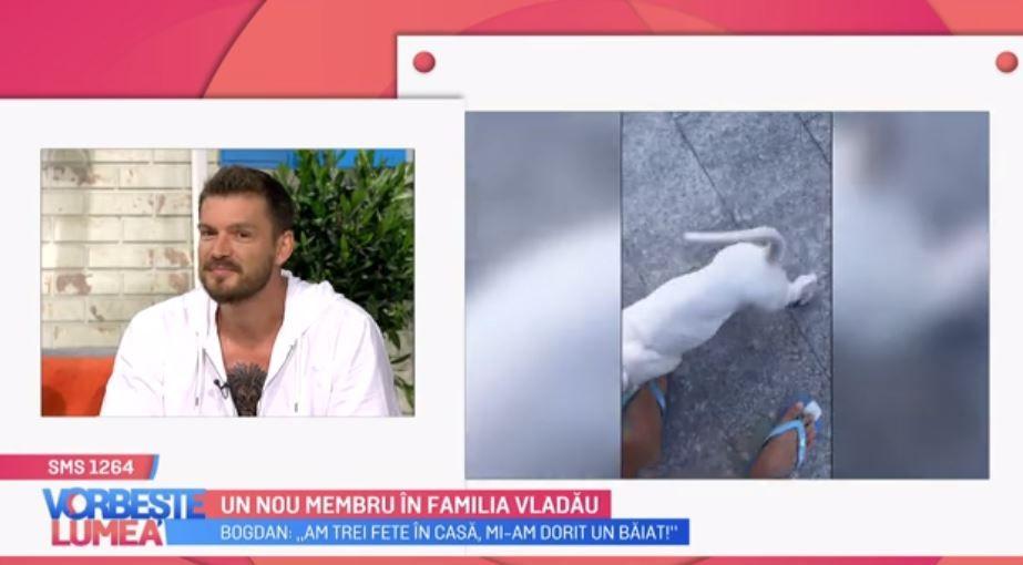 Gina și Bogdan Vlădău, despre noul membru al familiei