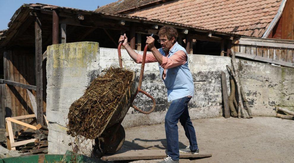 VIDEO Șeful a ajuns la munca de jos. Cum se descurcă Dragoș Anastasiu în grajd, la cai