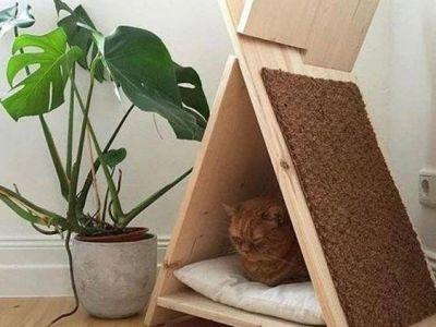 """Surpriză pentru pisica ta! Cele mai ingenioase idei de """"căsuțe"""" pentru animalul tău de companie"""