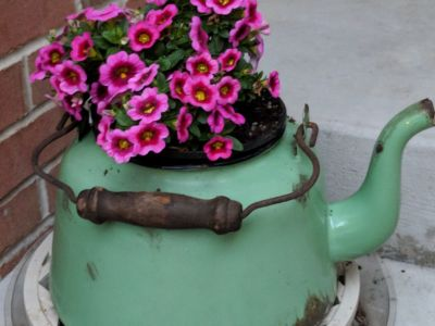 O oală veche poate să-ți înveselească grădina și casa! Vezi ce poți face cu acest obiect banal